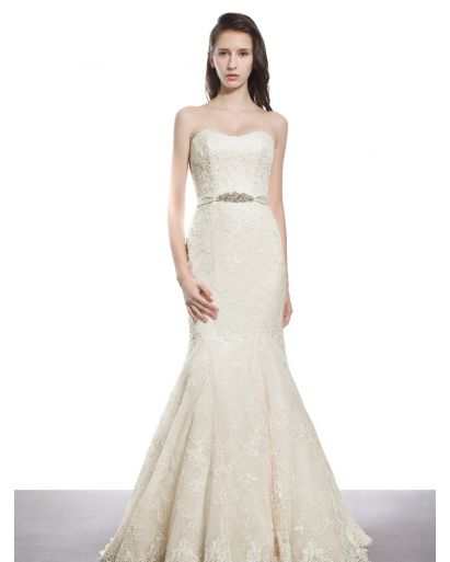 Sweetheart Neckline Mermaid Wedding Gown in Lace