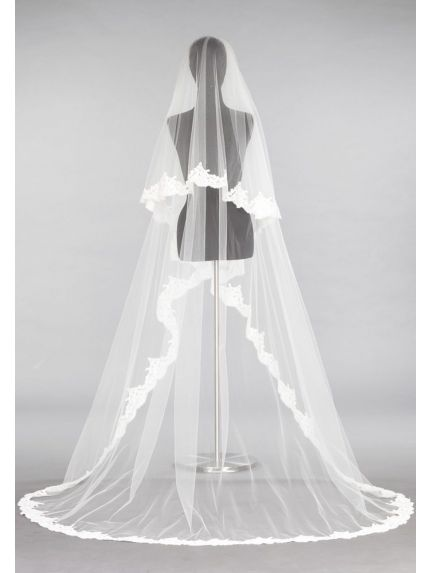 Chic Lace Trim Veil